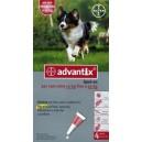 Advantix Spot On per cani da 10 a 25 kg.